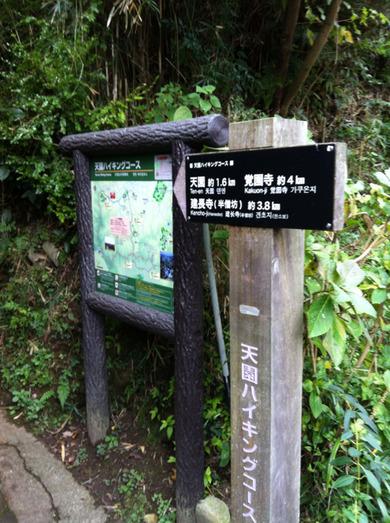 「鎌倉 天園」 お散歩リハビリ