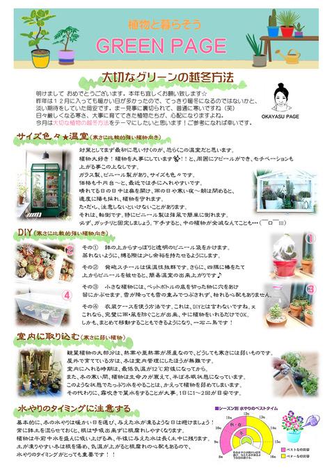 P6-green