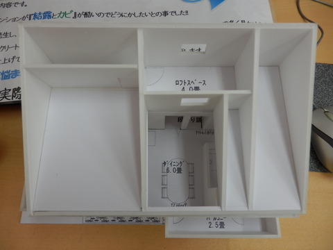 P8061041