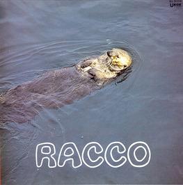 RACCO / 古澤良治郎