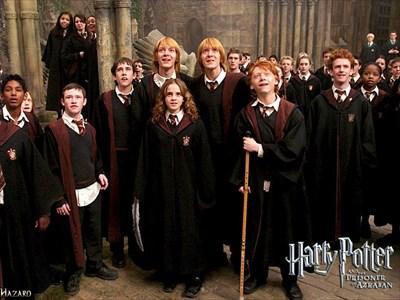 Gryffindor-hermione-granger-30394293-1024-768_R