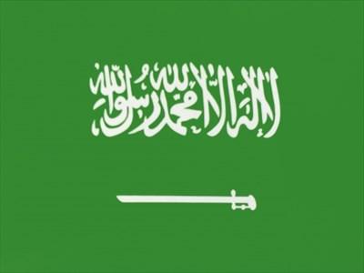 サウジアラビアの女性の権利で打線組んだったwww