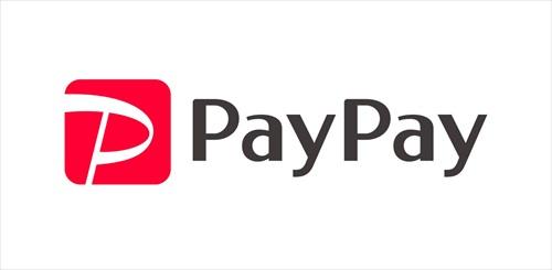 【悲報】PayPay、逝く