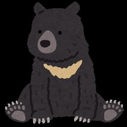 animal_bear_tsukinowa