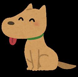 犬のベロ、ヤバすぎる