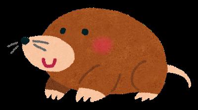 animal_mogura