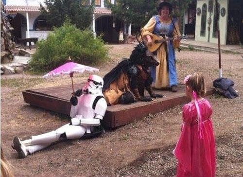 funny-wtf-stormtrooper-donkey
