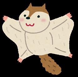 animal_momonga