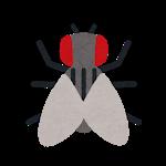 bug_mark14_hae