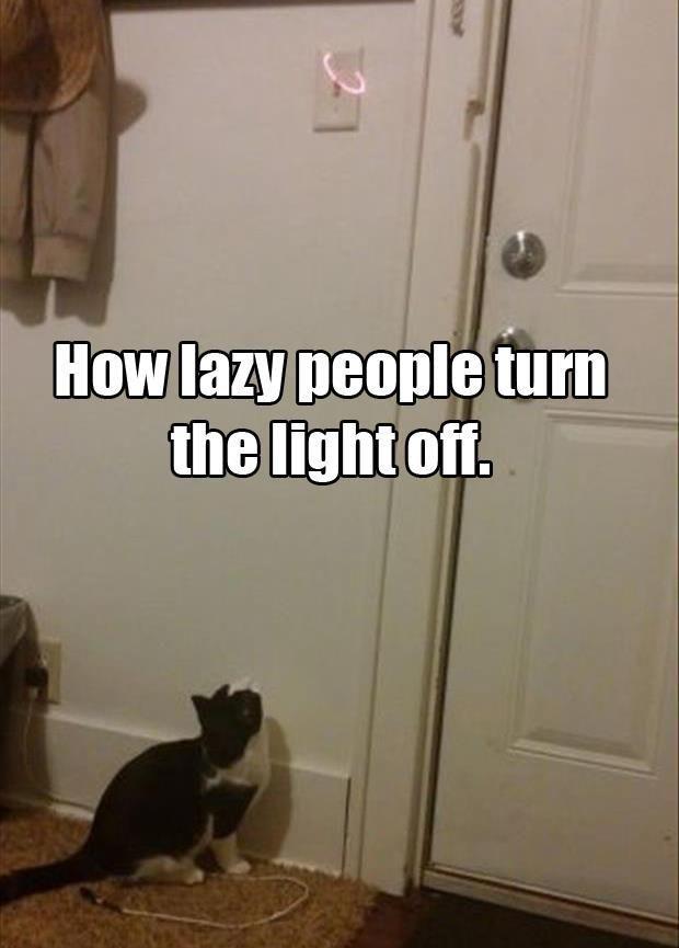 laziness-level-expert-20
