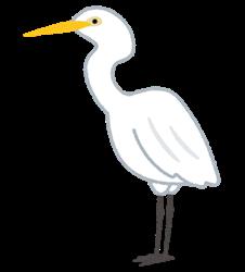 bird_shiro_sagi
