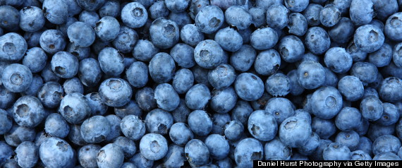 r-BLUEBERRIES-large570