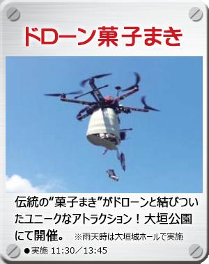 p-drone