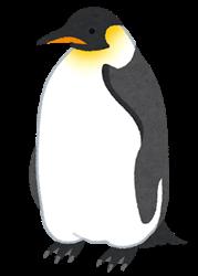 penguin02_koutei