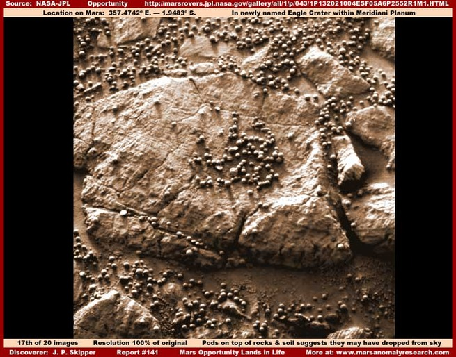 17-141-pods-on-rocks