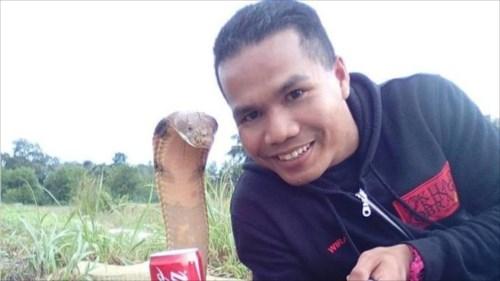 コブラの達人、「コブラがいる」と通報を受け、出動した際にかまれて死亡 マレーシア
