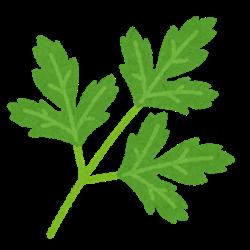 vegetable_italian_parsley