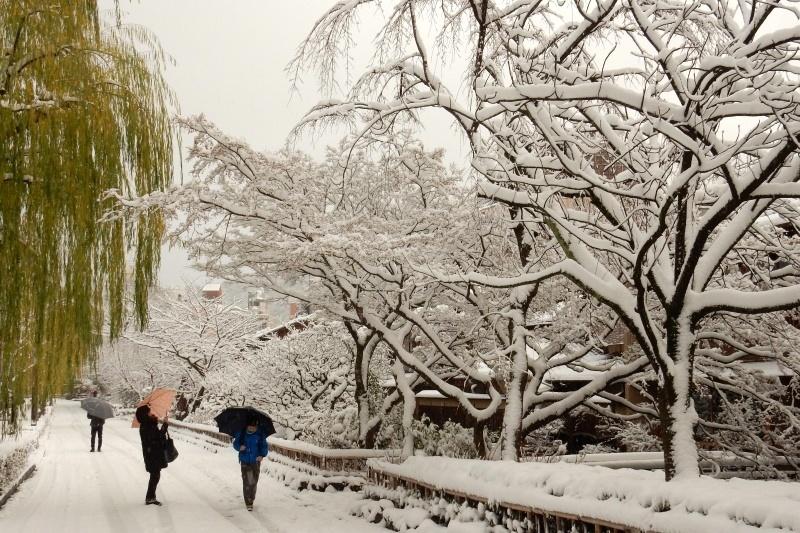 雪京都 120