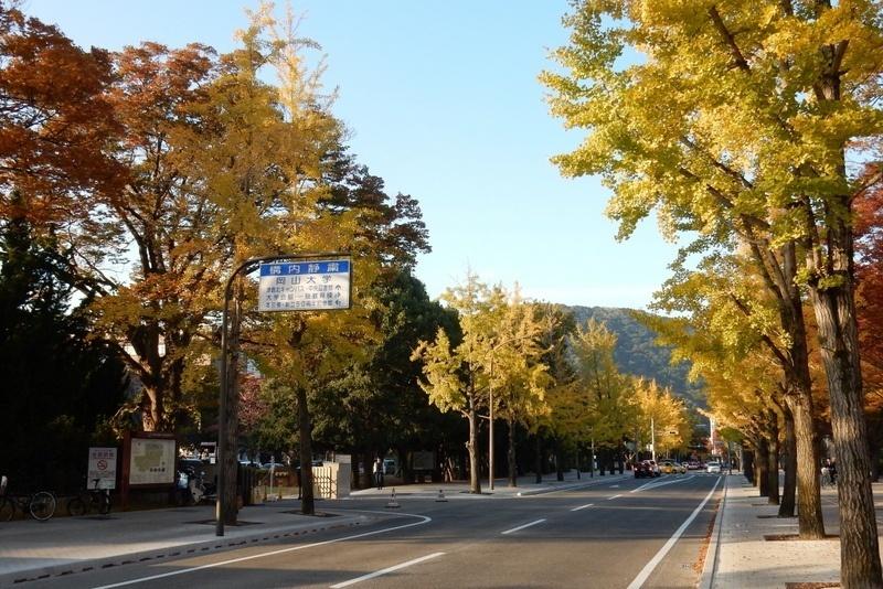 岡山マラソン 011
