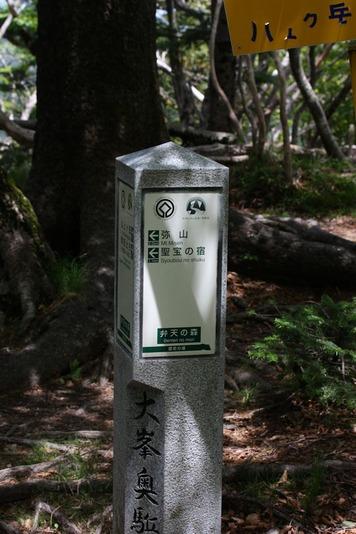 7447弁天の森