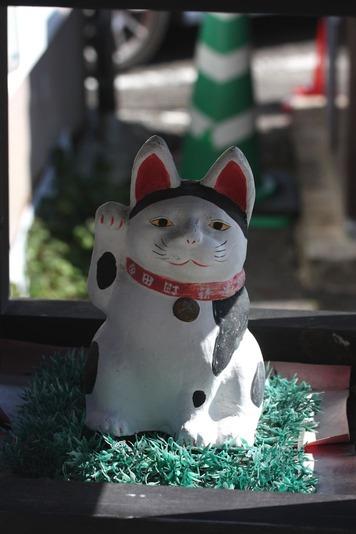 5564まねき猫