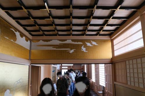 IMG_7861鷺の廊下天井2s
