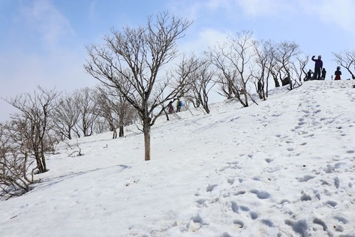 IMG_6358藤原山頂