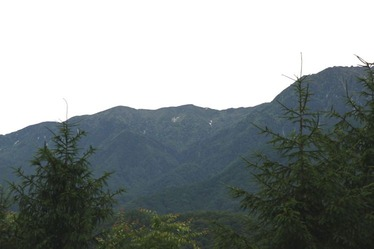 IMG_8206越百山s