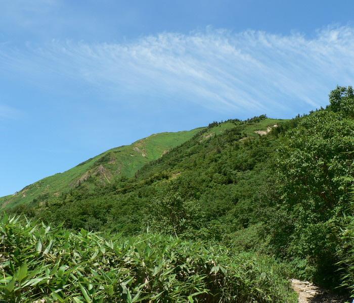 道(標高2000m付近)