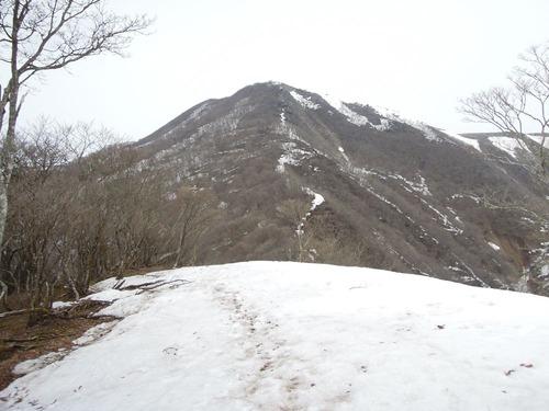 8461藤原岳01