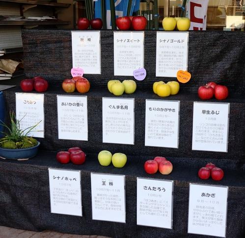 IMG_5786小布施のリンゴ1m