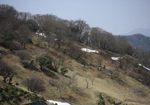 6146北斜面の残雪