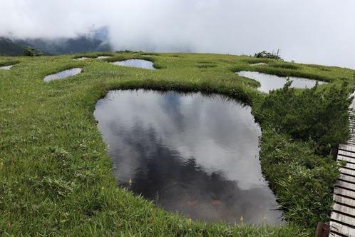 0629池