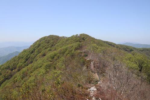IMG_7133横山岳01m