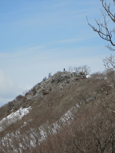 8486藤原岳山頂2