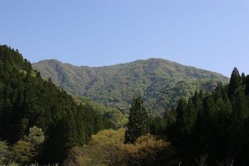 IMG_7021横山岳S