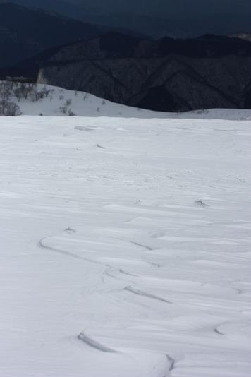 5741雪紋1