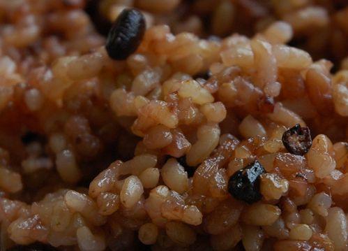 酵素玄米熟成4日目