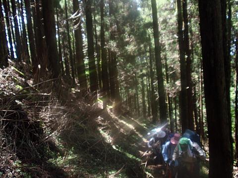 02登山道