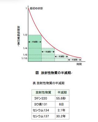 半減期の説明グラフ