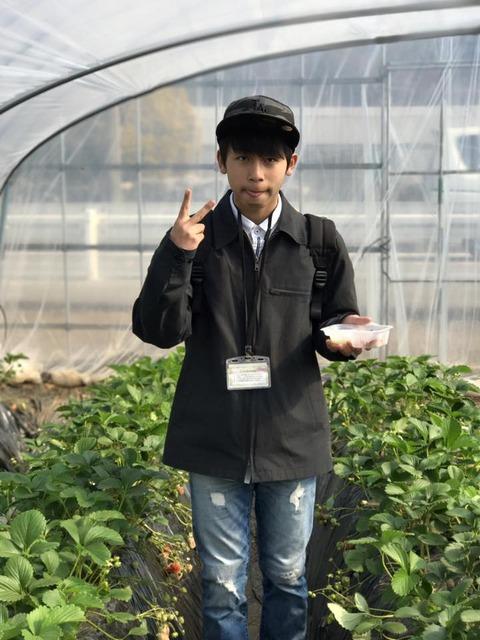 170320_和田農園_8