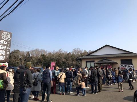 170320_和田農園_4