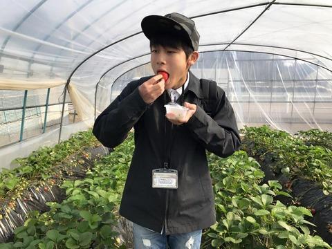 170320_和田農園_2