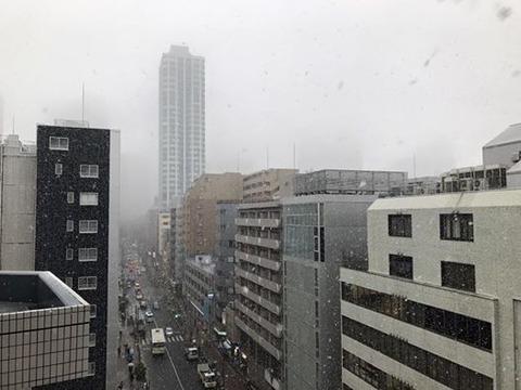 161124_雪