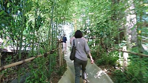 熱海③:08本殿横の竹林を抜け190925