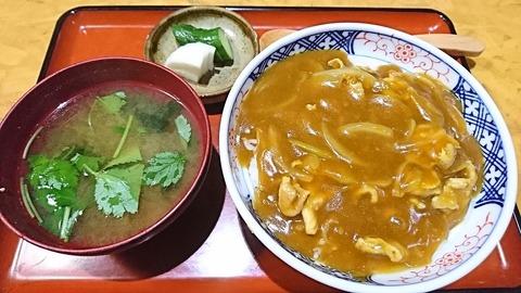 誠月:①カレー丼830円191008