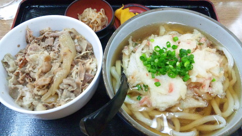 四国大名:①牛飯300天ぷら280全130527