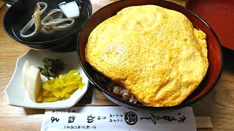 かねよ:①きんし丼上3000円190826