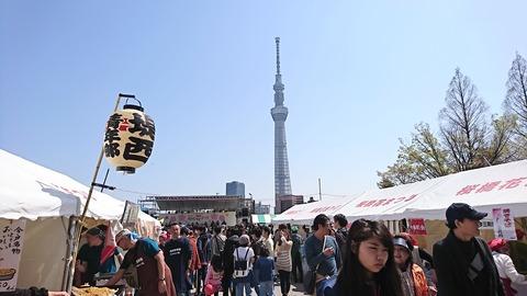 隅田公園花見:⑨運動公園花マツリ会場180331
