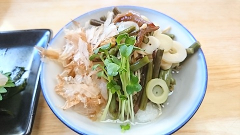 尾張屋:④山菜おろし400円191117